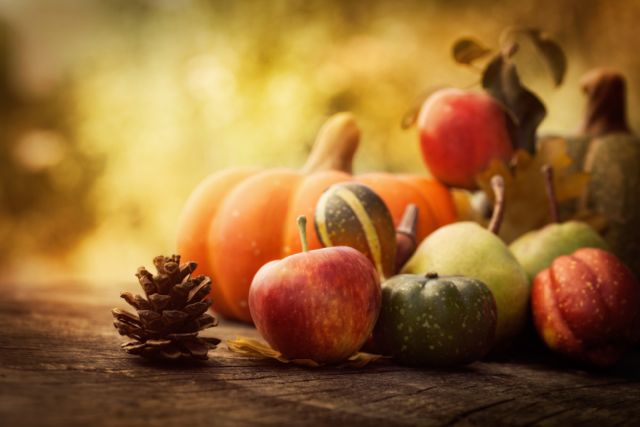 Apples, pumpkins, and other fall fruits