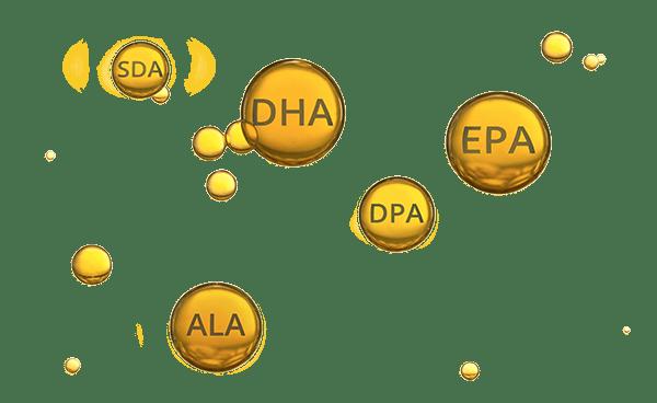 Omega-3 fatty acids EPA DHA ALA DPA