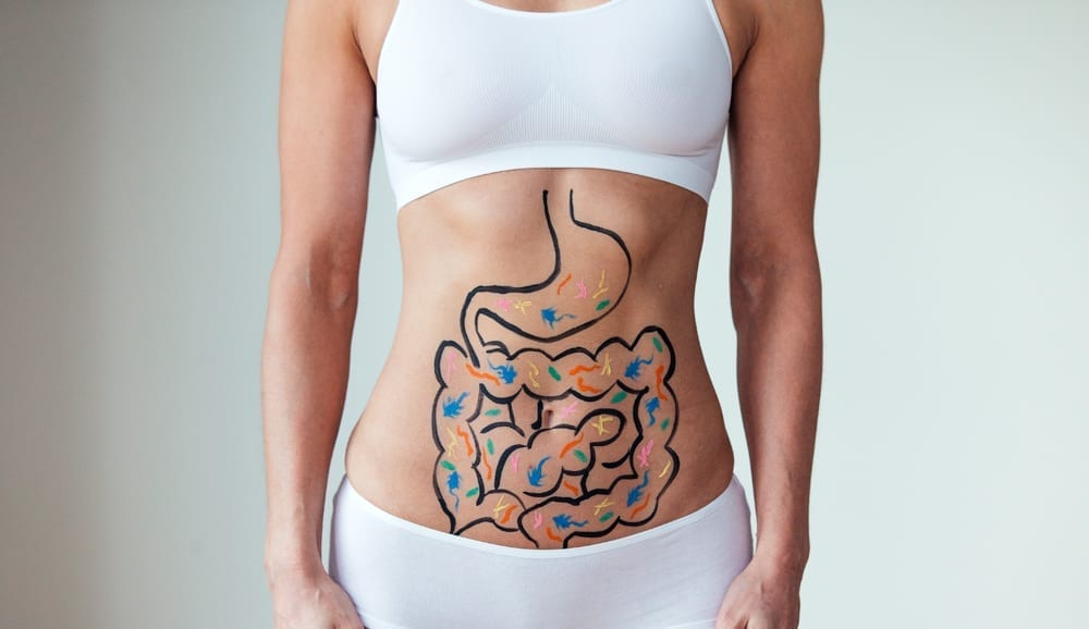Microbiome Basics How To Nurture Your Gut Bacteria Omega3 Innovations
